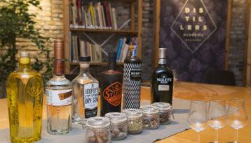 Gin en Schiedam - een tweeling